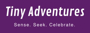 Tiny Adventures logo